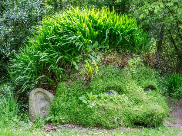 The Lost Gardens of Heligan, just a 5 minute drive from Mevagissey.
